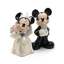 Mickey and Minnie Mouse Wedding Salt and Pepper Shakers