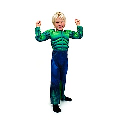 Incredible Hulk Fancy Dress Costume