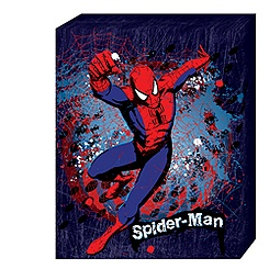 Spider-Man Splat Canvas Print